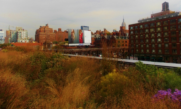 The High Line #hoptgf