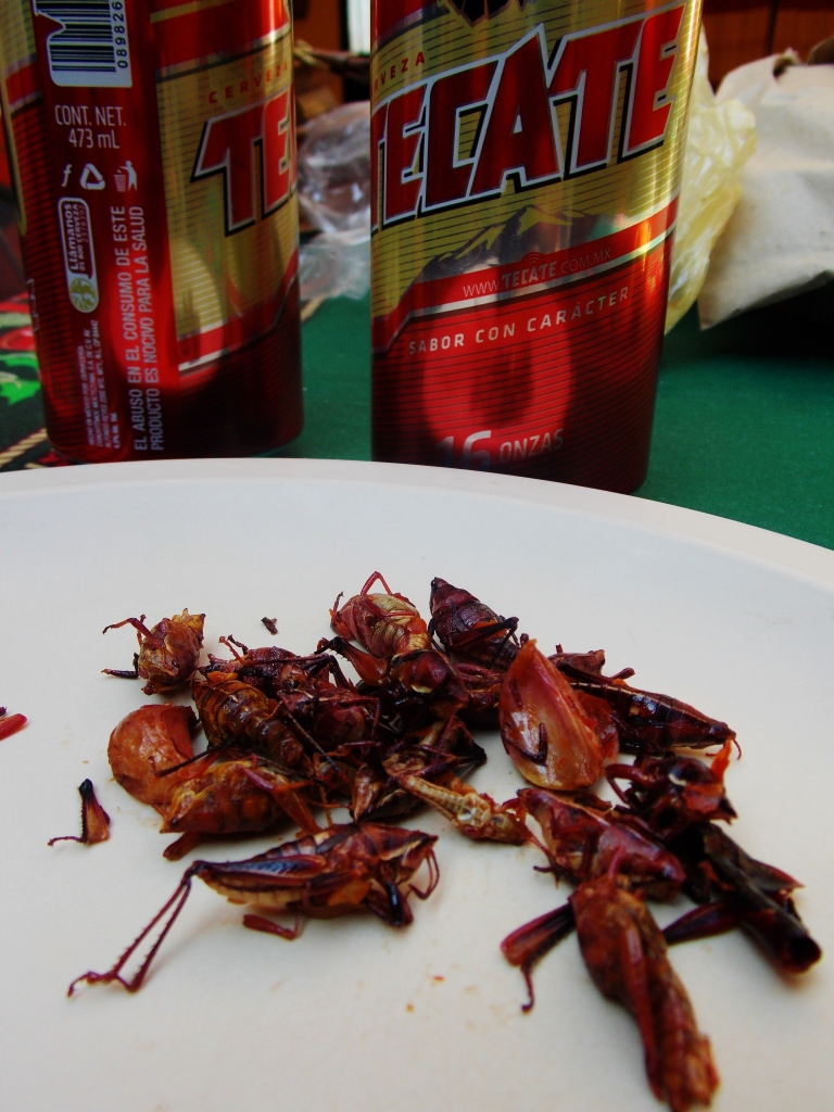 Garlic and Chilli Chapulines, or crickets to me and you