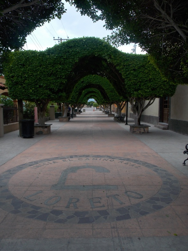 Loreto, Baja #hoptgf