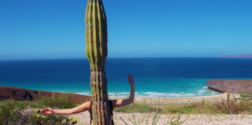 Ollie Cactus #hoptgf