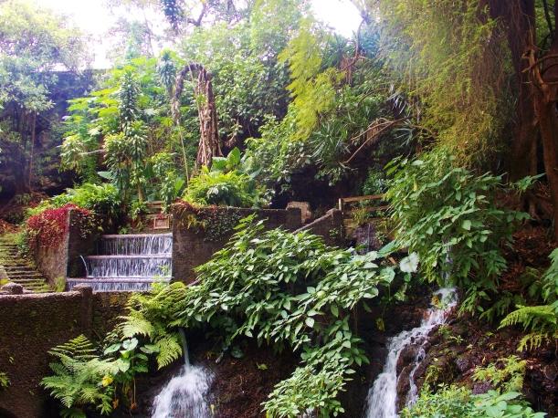Parque Nacional de Cupatitzio #hoptgf
