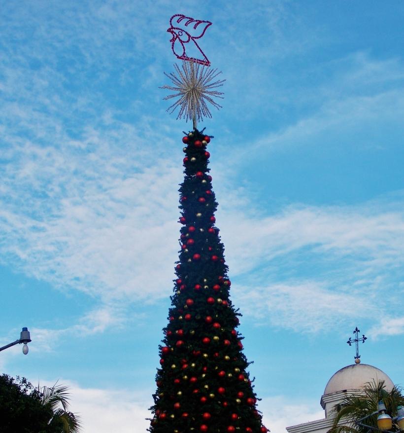 Gallo Beer Sponsored Christmas