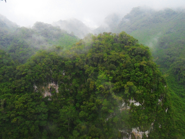 Cloud forest of Semuc Champey