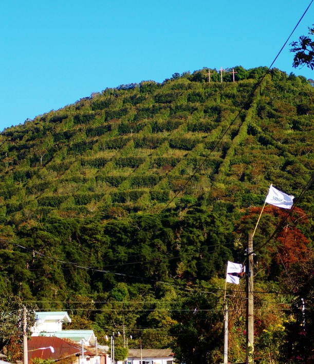 The distinctive wind breakers and crosses of Apaneca