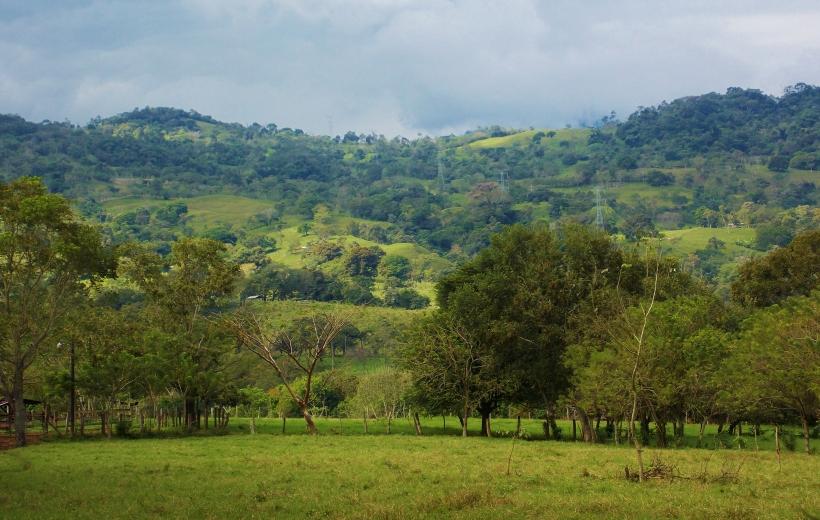 Green hills of Honduras