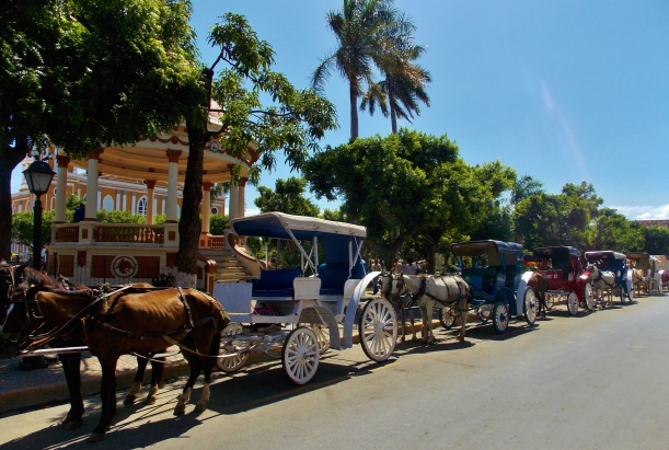 Horse drawn carts of Granada