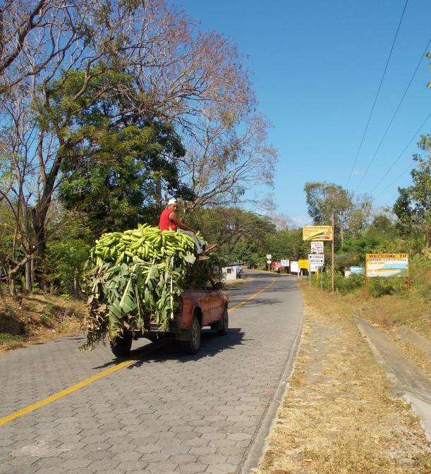 Plantain truck - Ometepe's main crop