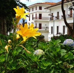 Flowers in Popayans main square