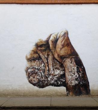 Random street art in Popayán