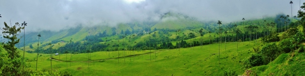 Valle de Cocora - On a cloudy day,,,