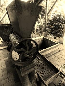 Victorian De-shelling machine and fermenting pit