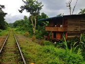 Many shacks are dotted by the tracks in the middle of the jungle - San Cipriano