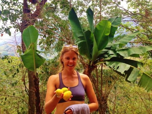 Scrumping for mangoes on our hike