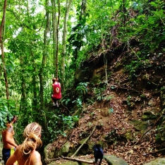 Swinging the vine...its a jungle. You have to!