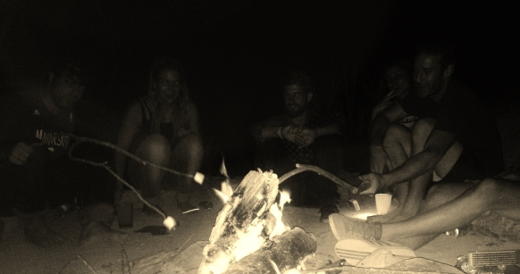 Marshmallows by the fire